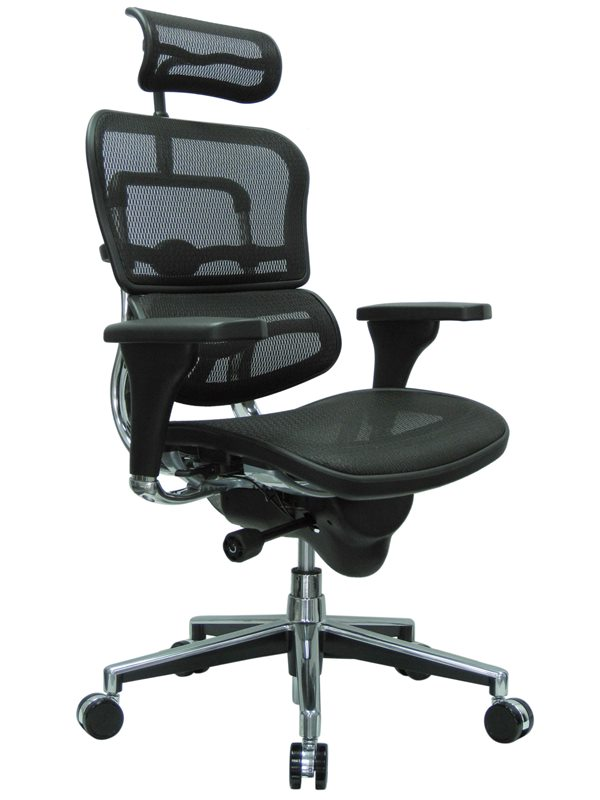 Raynor ME7ERG Ergohuman Mesh Chair With Headrest