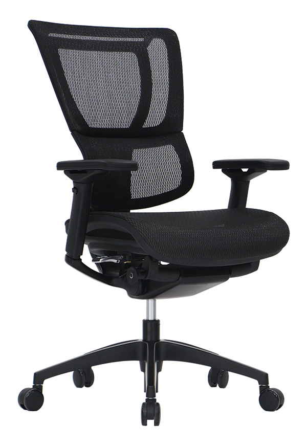 Raynor Eurotech IOO Chair Black Frame