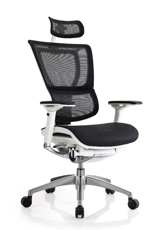 Raynor Eurotech IOO Chair White Frame With Headrest